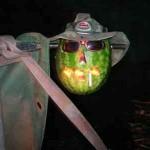 3 - życie arbuza
