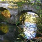 spływy kajakowe Wieprzą