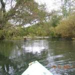 spływy kajakowe  kajakiem do morza image_d (10)