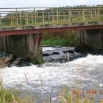 impreza integracyjna spływy kajakowe image_d (11)