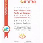 Perła w Koronie - Wielkie Odkrywanie Polski