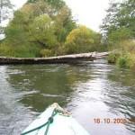 spływy kajakowe  image_d (3)