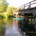 spływy kajakowe  image_d (4)
